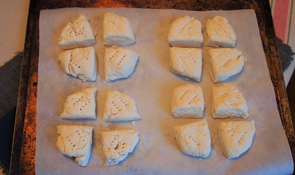 16 unbaked scones on a tray.